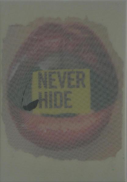 """never hide"" - acryl/mischtechnik auf leinwand - 18 x 25 cm"