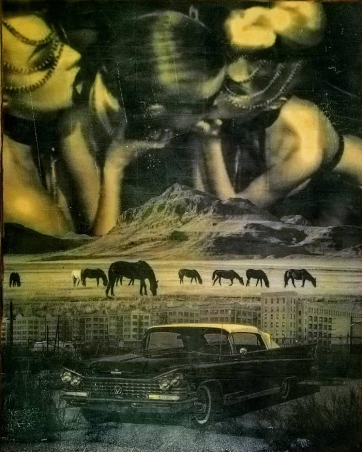 """wild horses"", acryl, papier, kunstharz auf leinwand, 100 x 80 cm"